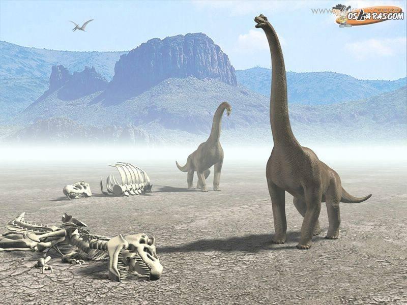 Foto Dinossauro