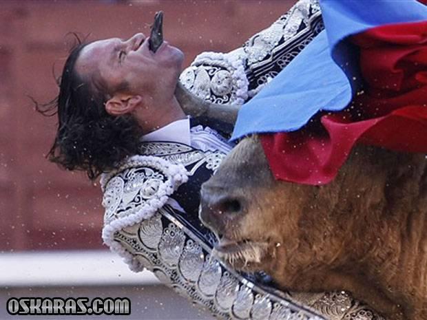 toureiro_espanhol