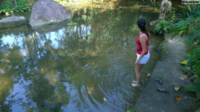 piscina natural em angra dos reis